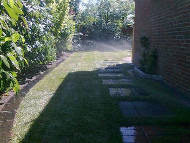 Rasen beete pflanzen gartengestaltung sucker for Gartengestaltung beete